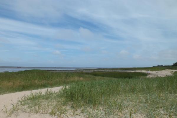 cuxhaven16FD9ABA7B-6DE0-01A4-4FC3-E463F5CD6199.jpg